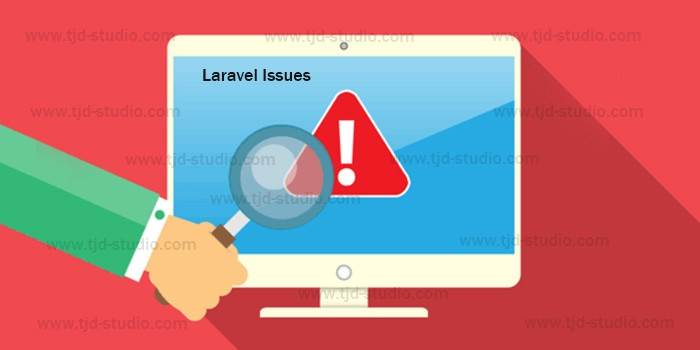 Laravel public folder on live server